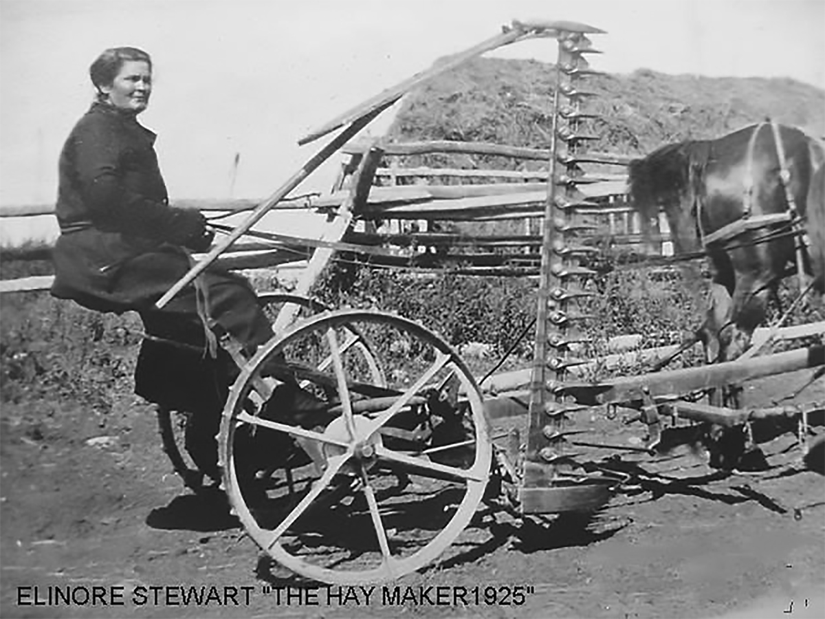 Above - Elinore Stewart on a horse-drawn hay mower, 1925.